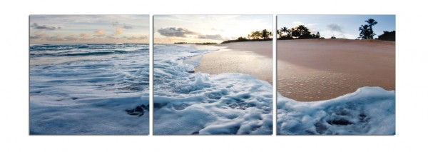 Ashore In Hawaii Triptych