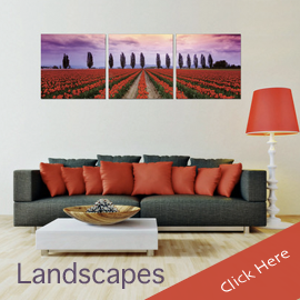Landscape Photography Photo Wall Art